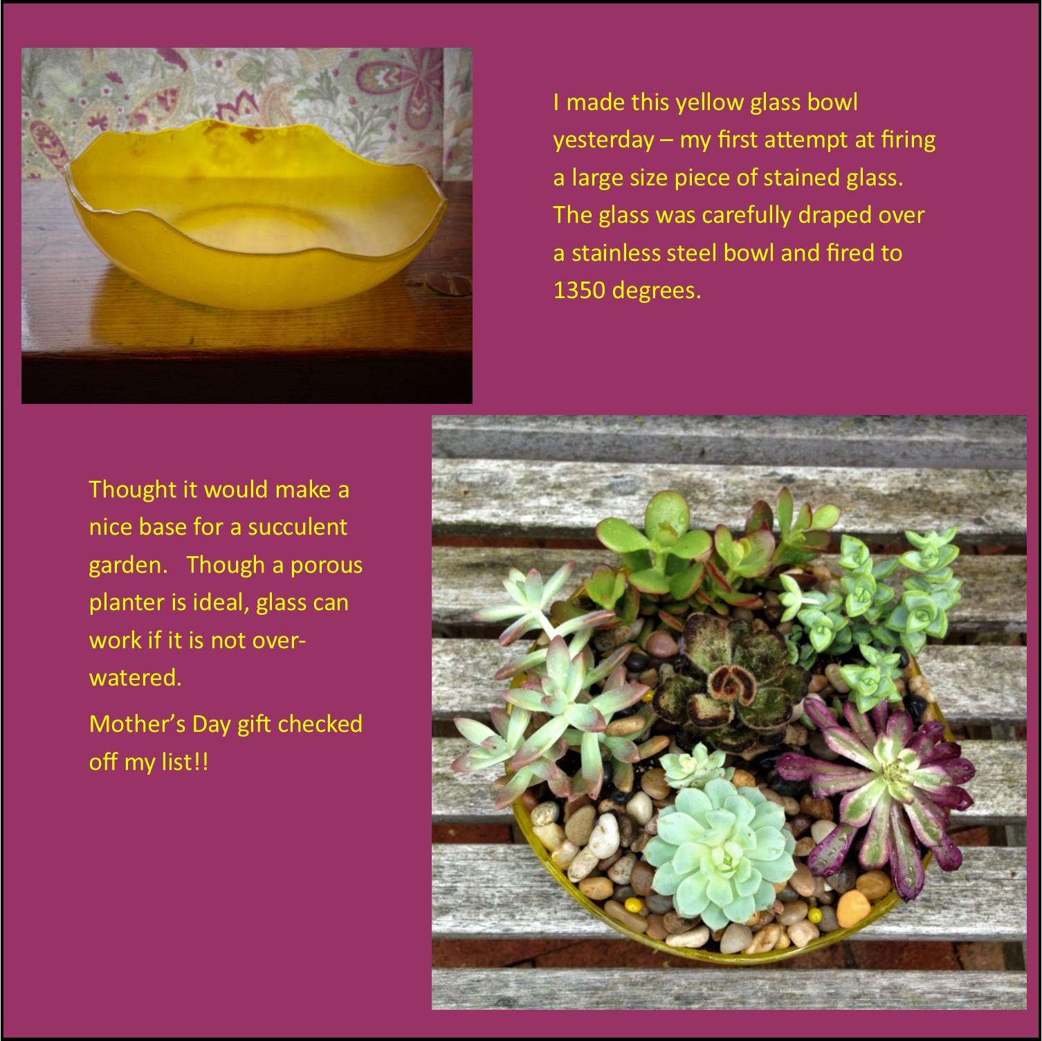bowl and garden
