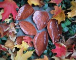 terracotta leaves